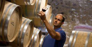 Oenologue dans une cave entrain d'analyser la couleur de son vin